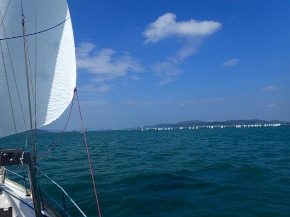 Plachtíme kolem závodní flotily
